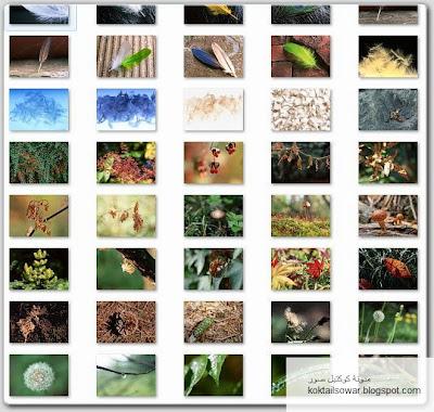 مجموعة خلفيات وصور جودة عالية Tn_DataCraft+SozaiJiten+Vol+054+-+Fascinating+Nature+3