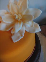 engagement cake 22.1.10