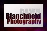 Dawn Blanchfield Photography