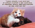os melhores amigos