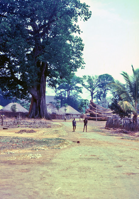 Falaba - on road from Kabala to Kurobonla