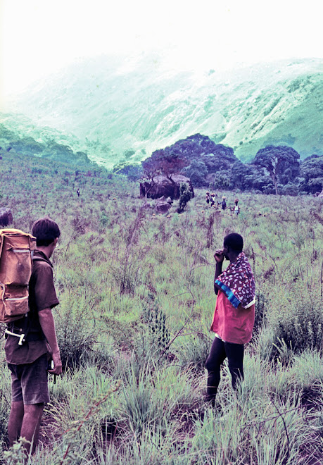 Peace Corps volunteer (1969-71) Lloyd Ziegler with guide on Bintimani