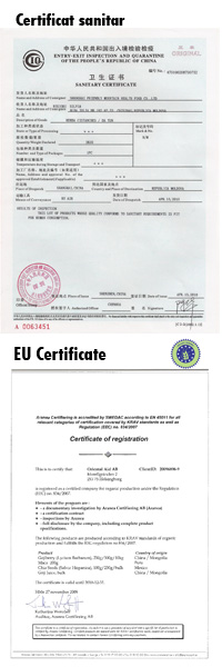 Certificate