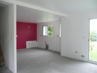 Flo et doudou vous racontent peinture cuisine salon for Peinture sejour gris