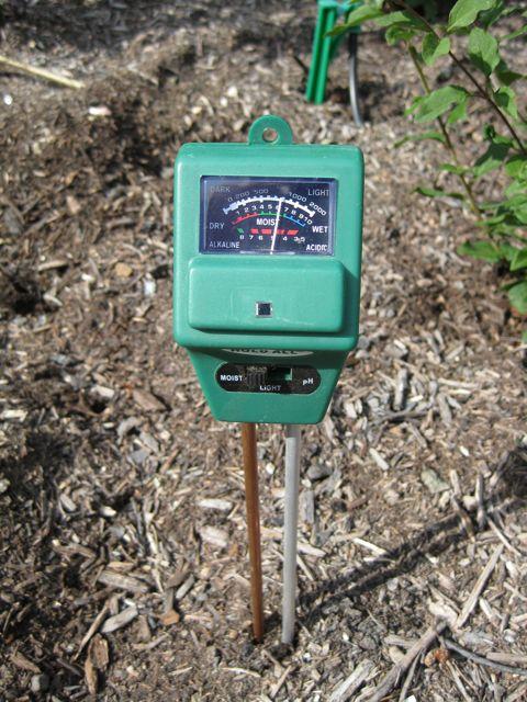 The farmer fred rant wilting plants check soil moisture for Soil moisture