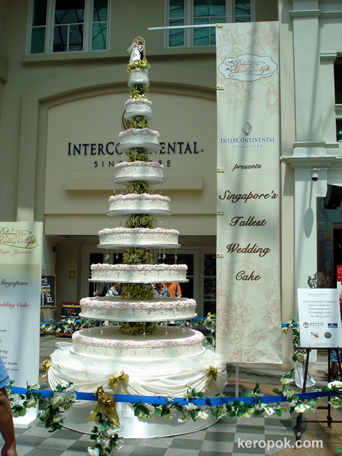 World's Biggest Cake | World's Tallest Cake Unveiled in ...