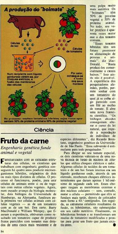 Reprodução de reportagem sobre o boimate na revista Veja