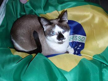 BRASIL - 2014 É NOSSO!!