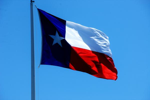 texas state flag wayne wendel