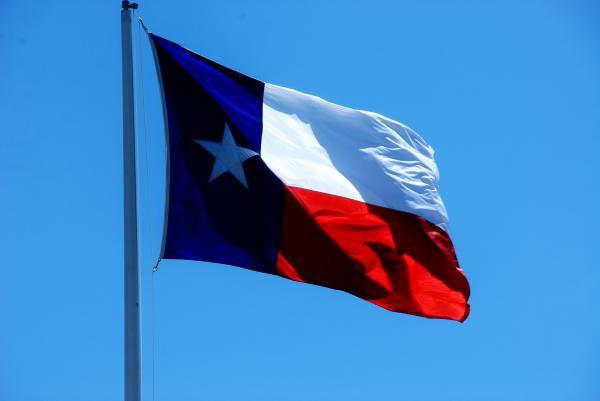 texas state flag wayne wendel