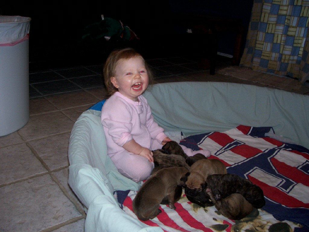 [Melissa+and+puppies3.aspx]