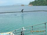 Ocean Adventure - Subic, Zambales