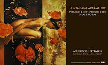 """Solo Exhibition """"Mundos Intimos"""""""