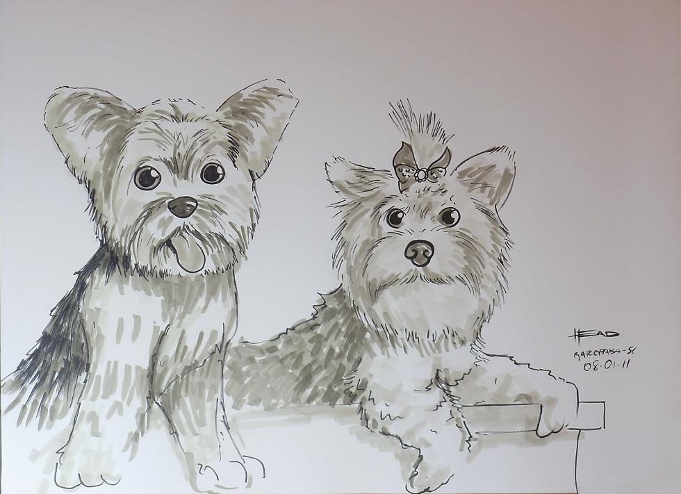 Caricatura ao vivo do casal simpatico de cachorrinhos