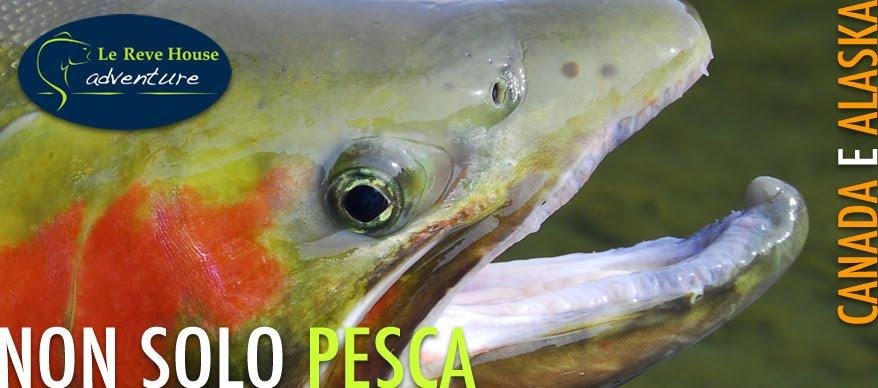 Le Reve House Adventure -- Pesca