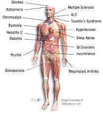 Lokalizace chorob člověka