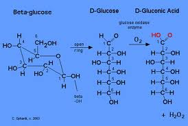 chemical test for reducing sugars