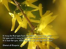 Surah Al-Baqarah:216