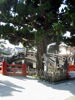 Bridge Tsurugaoka Hachiman-gu in Kamakura