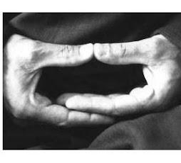 Manos Meditativas...