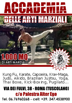 Taramanni 39 s kung fu blog accademia delle arti marziali - Palestra porta furba ...