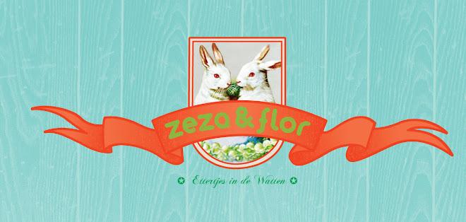zeza@flor blog!