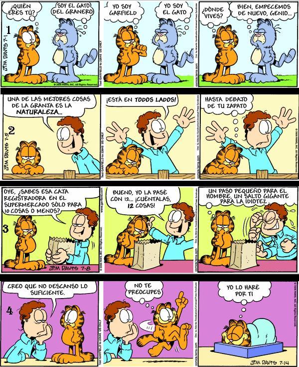 Garfield 13