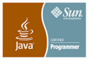 Sun Certified Programmer