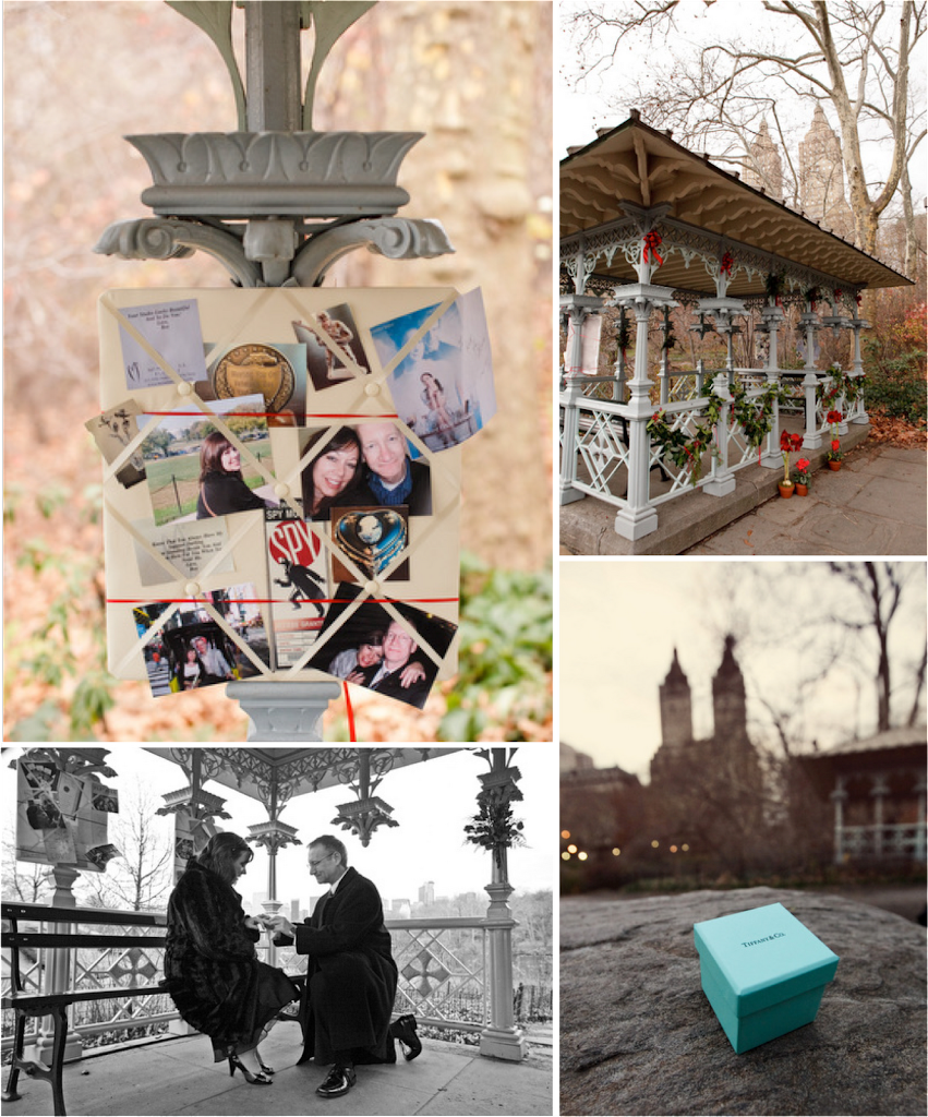 new-york-city-proposal-ideas-central-park-engagement