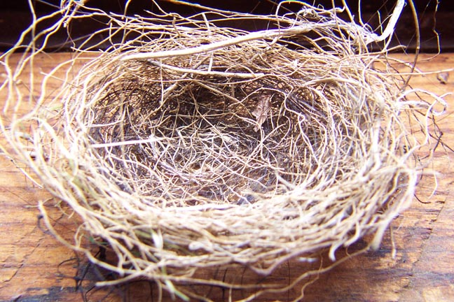 nester works empty nest