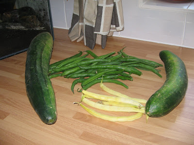 cucumbers, green and yellow beans