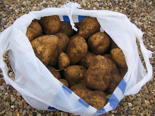 Charlotte potatoes