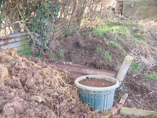 rhubarbs final resting place