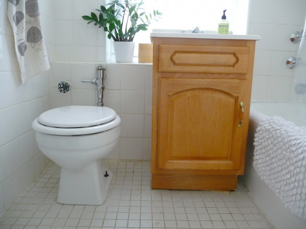 Ugly Bathroom Decorating Ideas : South of the sahara january