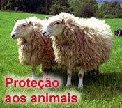 Proteção Incondicional
