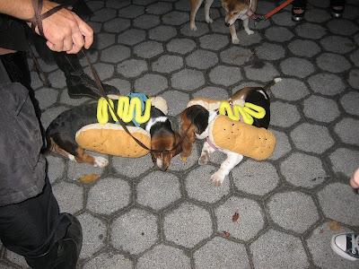 WEINER+DOGS.jpg