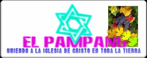 """CCR""""El Pámpano"""""""