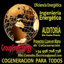 CoGeneracion