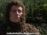 de robots y abejas, malcolm latino