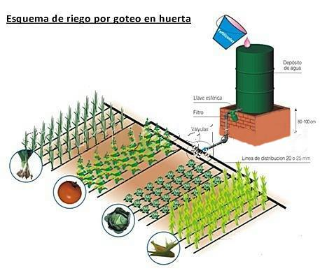 Ing ivan castellanos proyecto sistema de riego por goteo - Sistema de riego por goteo automatizado ...