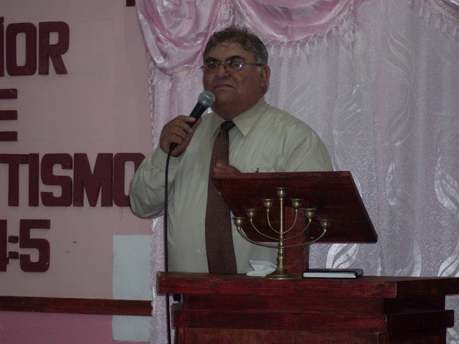José Luis Castruita Ramos