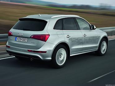 #16 Audi Wallpaper