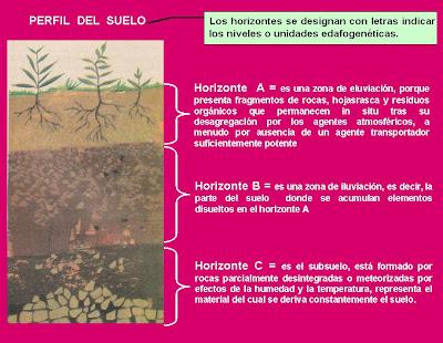 external image Imagen+Perfil+del+Suelo+%28Blog%291.bmp