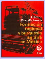 Formación regional y burguesía agraria en México (1982)