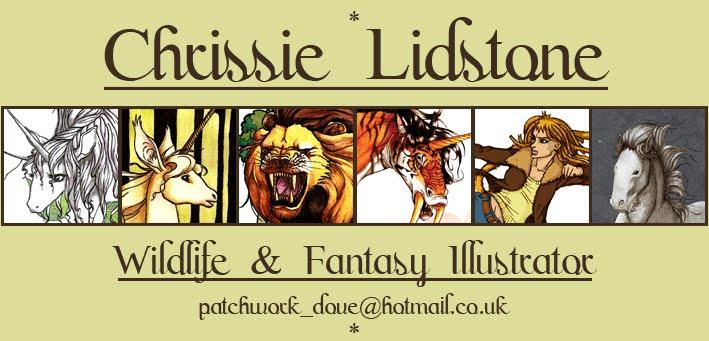 Chrissie Lidstone ~ Wildlife & Fantasy Illustrator