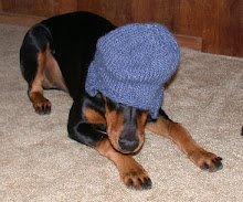 The Quilting Doberman wishing he was always dressed up for his photos