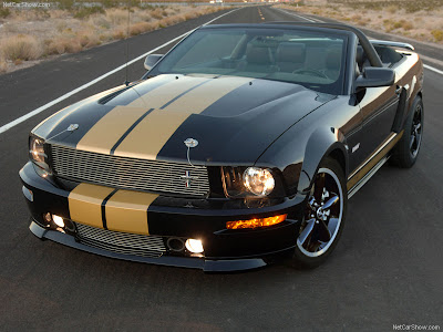 2008 Ford Mustang Shelby GT-H Convertible 2008 : Collection of Ford