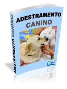 adestramentocaninono8 Curso de adestramento Canino