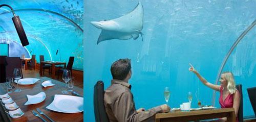 Ithaa el primer restaurante submarino del mundo isla for Conrad maldives rangali island resort islas maldivas