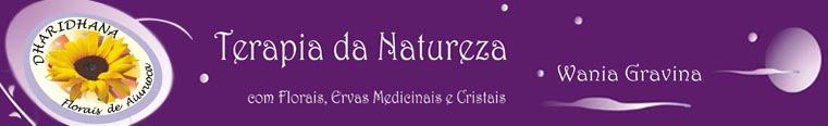 Terapia da Natureza